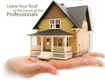 roofing-professionals